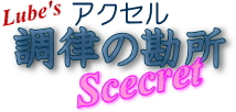 accelhimitsu1